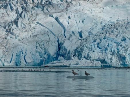 2014-Groenlandia-259
